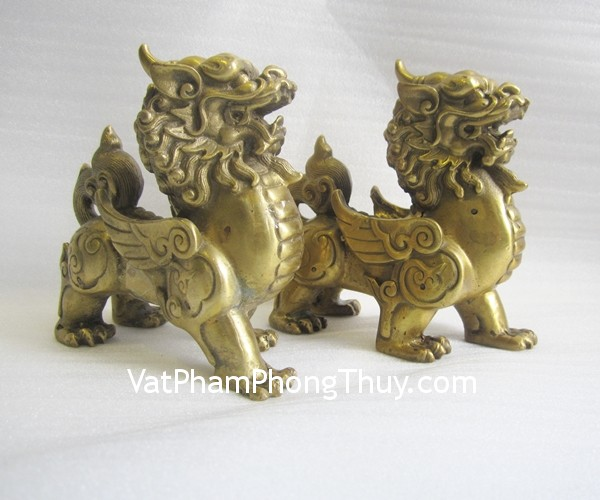 d113-ty-huu-dong-dung-01